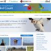 Great Backyard Bird Count, Boothbay Register, Cornell, Aubudon